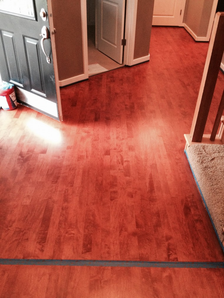 Maple Floor stained